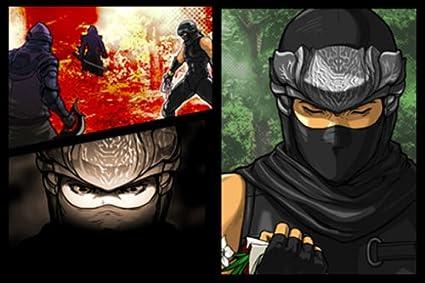 Ninja Gaiden: Dragon Sword [Importación alemana]: Amazon.es ...