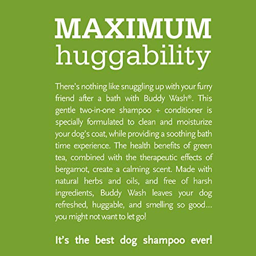Buddy Biscuits Buddy Wash Dog Shampoo & Conditioner for Dogs with Botanical Extracts and Aloe Vera, Green Tea & Bergamot - 16 fl. oz., Model:CS15232