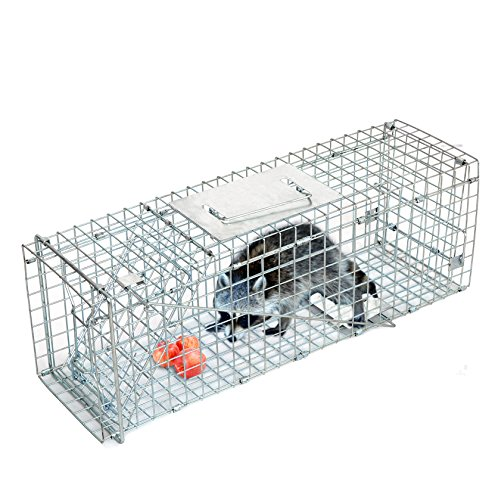 (Smartxchoices 24'' Long Live Animal Trap Steel Cage Catch and Release One Door Humane Rodent Cage Trap for Rabbits/Stray Cats/Squirrel/Skunk/Mink/Opossum Outdoor Small Animals Professional Style)
