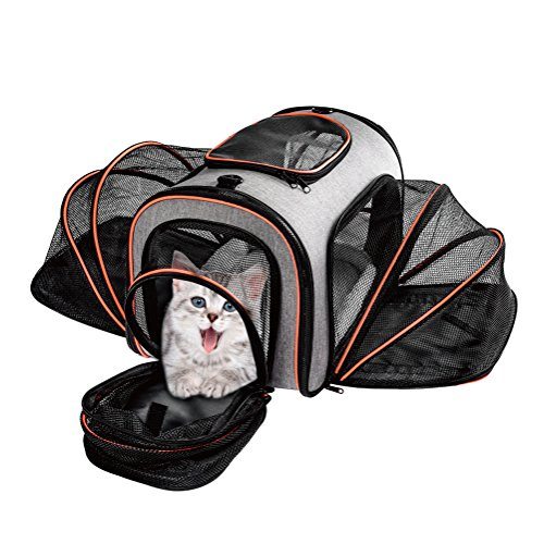 Huanxu Pet Travel Carrier Cat Dog Airline Approved Expandable Soft Sided 4 Sides Small Puppy Carriers with Removable Fleece Mat