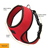 Friends Forever Air Mesh Harness with Leash (Medium, Red)