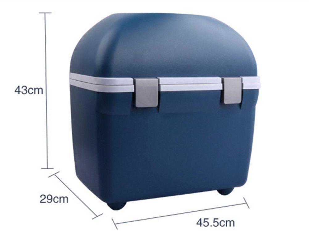 Kühlschrank Auto Nachrüsten : Auto kühlschrank auto dual use kälte kühlbox mini amazon