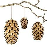 Cardboard Safari CBS1162 Variety Cardboard Pine Cone Set, Brown