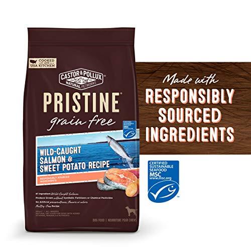 Castor & Pollux Pristine Wild-Caught Salmon & Chickpea Recipe Dry Dog Food, 18 lb