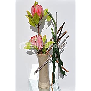 Intriguing Protea Orchid Leaves Branches Tall Vase Display 11