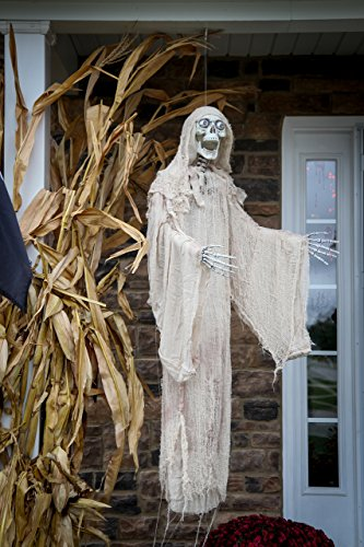 Animated Ghastly Reaper with (Outdoor Halloween Decorations Cheap)