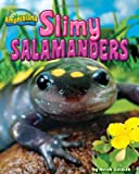 Slimy Salamanders, Meish Goldish, 1936087375