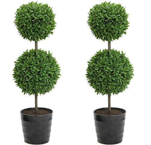- Admired By Nature Tabletop English Artificial Boxwood, Twin Pack