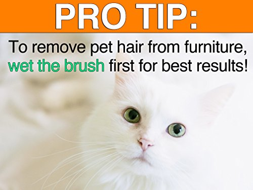 Dashka Cat Hair Removal Brush- Best Pet Hair Remover Cat-Removes Lint, Fur Hair from Clothing, Furniture, Couch, Carpet Car-Grooming Tool by Dasksha (Image #1)