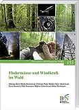 Fledermäuse und Windkraft im Wald (Naturschutz und Biologische Vielfalt)