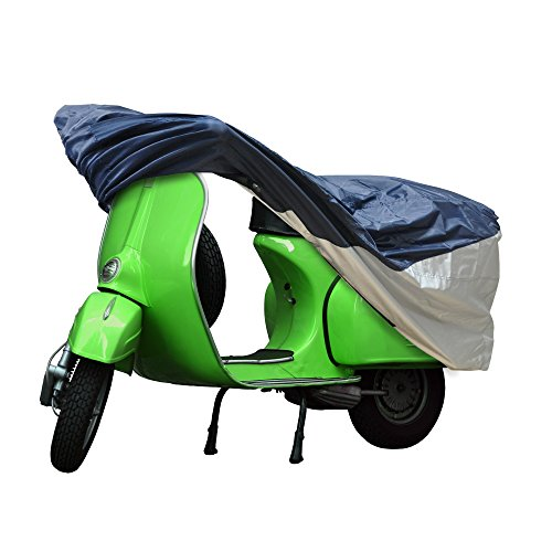 (Detailer's Preference Polyester Scooter Cover Fits Small and Medium)
