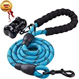 JBYAMUS 5 FT Strong Dog Leash with Comfortable Padded Handle and Highly Reflective Threads for Medium and Large Dogs (5-FT, Blue)