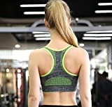 Vermilion Bird Womens Seamless Sports Bra High Impact Pocket Yoga Bras