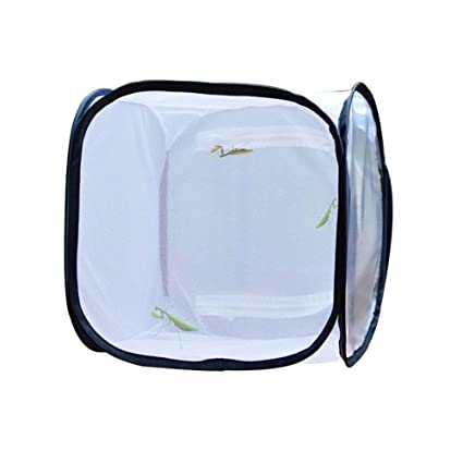 Leoie Butterfly Observation Cage Collapsible Insect Cage Insect Control Seedling Light Transmission Incubator 30*30*30