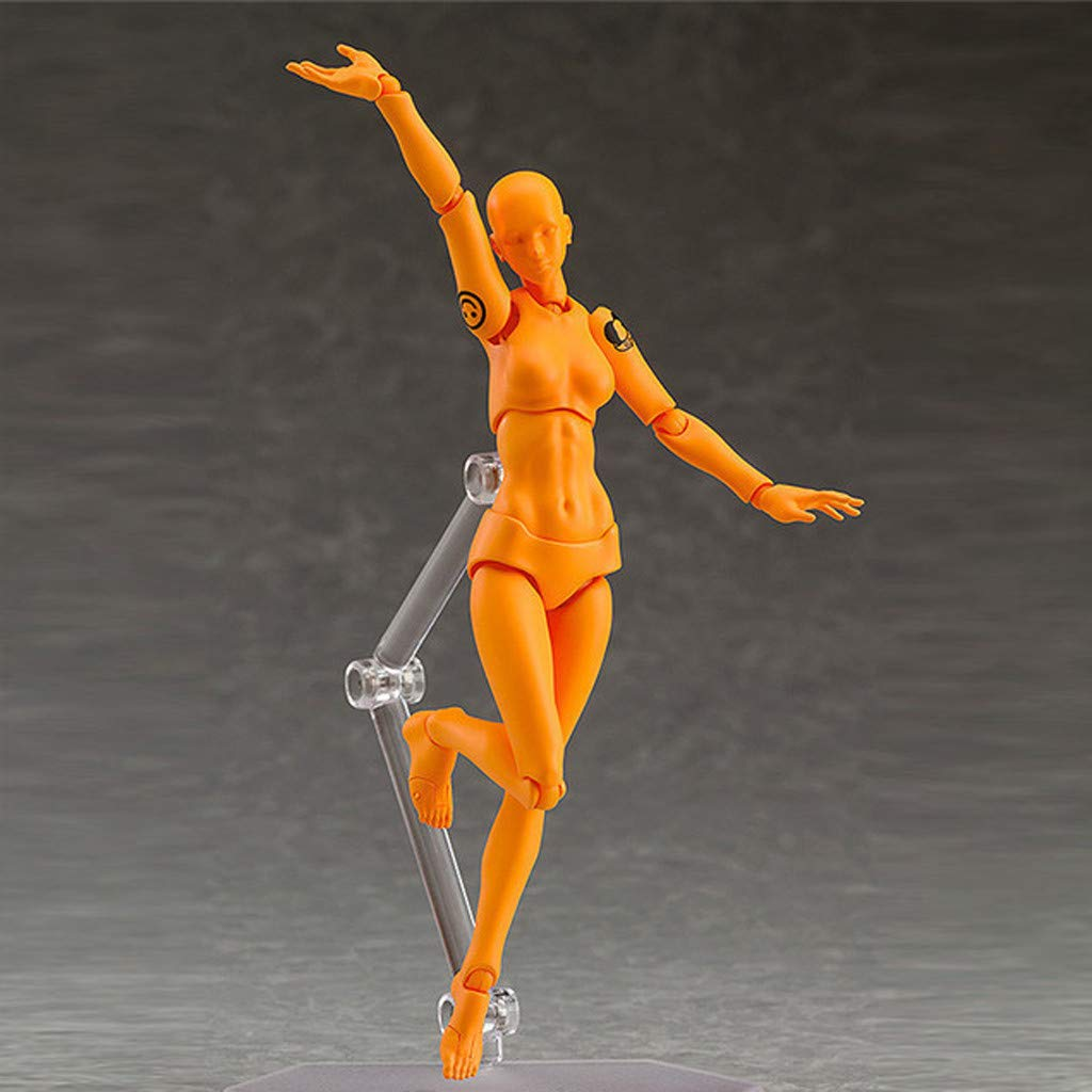 Athli Art Model Drawing Figures for Action Figure Man Woman Kits Physical Models Arts Model Human Mannequin Kits (F)