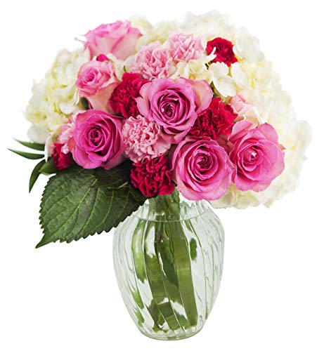 KaBloom Let Them Eat Cake Bouquet of Pink Roses and White Hydrangeas with Vase