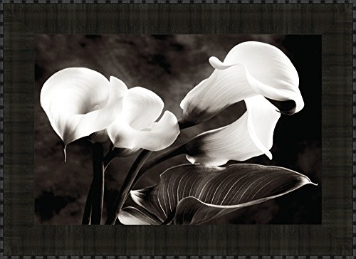 Midwest Art & Frame Calla Lilies No.1 by Sondra Wampler (Sondra Wampler Calla Lilies)