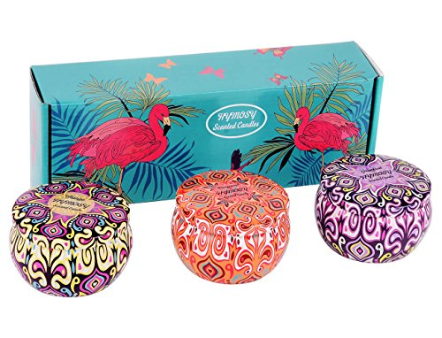 Grapefruit, Mango & Bergamot Scented Soy Aromatherapy Candles, Strong Fruity Fragrance & Essential Oils, 100% Natural Vegan Wax Burns Cleanly Up to 25Hrs, 3x220g Per Travel Tin, Candle Gifts for Women by HYMOSY (Image #6)