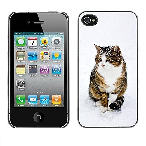 LASTONE PHONE CASE / Coque Housse Etui Shock-Absorption Bumper et Anti-Scratch Effacer Case Cover pour Apple Iphone 4 / 4S / Cute Snow Cat