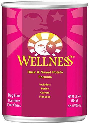 Wellness Super5Mix – Duck & Sweet Potato – 12 x 12.5 oz