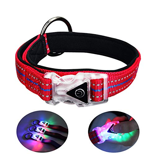 QQPETS LED Dog Collar Glow Lights for Night Safty Walking Personalized Waterproof Flashing Light up Reflective Basic…
