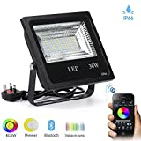 Autai LED Flood Light Waterproof 30W RGB Multi Color Changing Dimmable with Smart Bluetooth APP Control for Courtyard, Garden, Lawn, Tree, Christmas Decora