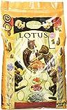 Lotus Wholesome Grain Free Small Bites Turkey Recipe Dry Dog Food, 10 Lb Bag Review