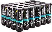 Dunlop ATP Championship Regular Duty Tennis Balls, Case of 24 Cans / 72 Balls