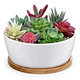 6.5 Inch Round White Ceramic Succulent Cactus Plants Planter Pot with Drainage Bamboo Tray(Deep)