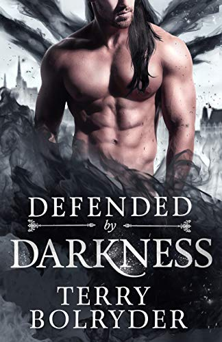 Defended by Darkness: (The Fae Princes) (Wings, Wands and Soul Bonds Book 2) by [Bolryder, Terry]