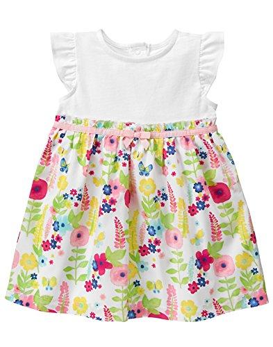Gymboree Baby Toddler Girls' Floral Border Print Dress, Multi, 12-18 Months (Bodice Border Print Dress)