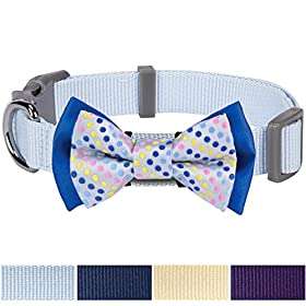 Blueberry Pet Easter Gift Polka Dots Handmade Bow Tie Dog Collar in Neat Pastel Blue Small Neck 12-16 Collars Accessories for Puppies & Small Dogs