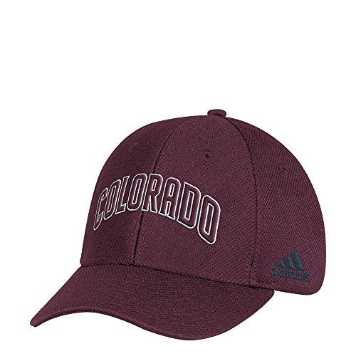 adidas Adult Men Wordmark Mesh Structured Adjustable Hat, Maroon, One Size (Retro Slouch Adjustable Hat)
