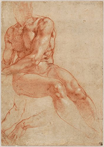 Michelangelo Buonarroti - Seated Young Male Nude And Two Arm Studies Recto C 151 (18x24 Paper Poster)
