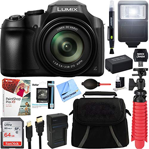 Panasonic DC-FZ80K 4K 18.1MP Point & Shoot Digital Camera, 60X 20-1200mm Lens, WiFi, Black Bundle with Paintshop Pro 2018 Digital Download, 64GB Memory Card and Accessories (6 Items)