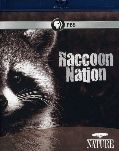 Blu-ray : Nature: Raccoon Nation (Blu-ray)