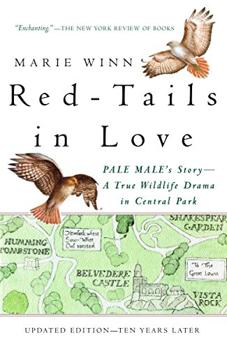 (Red-Tails in Love: A Wildlife Drama in Central Park (Vintage Departures))
