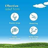 Claritin 24 Hour Allergy Medicine, Non-Drowsy
