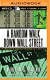 img - for A Random Walk Down Wall Street: The Time-Tested Strategy for Succesful Investing by Burton G. Malkiel (2015-08-04) book / textbook / text book
