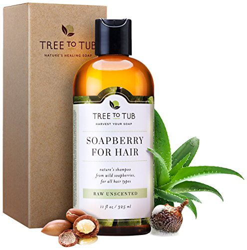 Eco Friendly Shampoo (Organic Sensitive Scalp Shampoo —the Only Fragrance Free Shampoo that Naturally Soothes Sensitive Skin, Eczema & Psoriasis with Gentle Soapberry Lather, Unscented, 11oz—Tree to Tub)