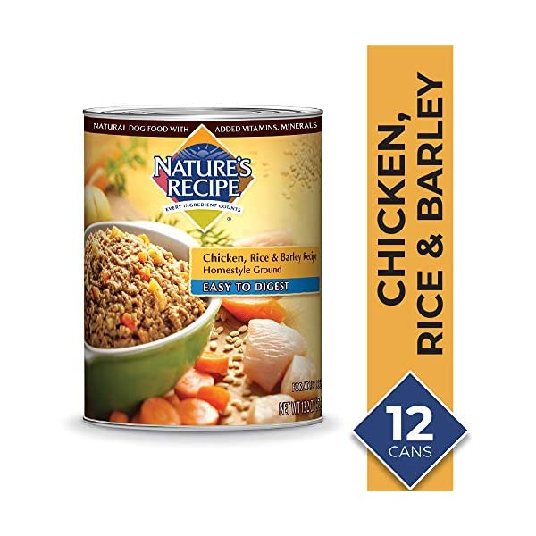 Nature's Recipe Chicken, Rice & Barley Recipe Wet Dog Food, 13.2 Ounces (Pack of 12), Easy to Digest Homestyle Ground