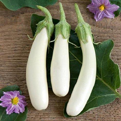 David's Garden Seeds Eggplant Casper SL4792 (White) 50 Non-GMO, Heirloom Seeds