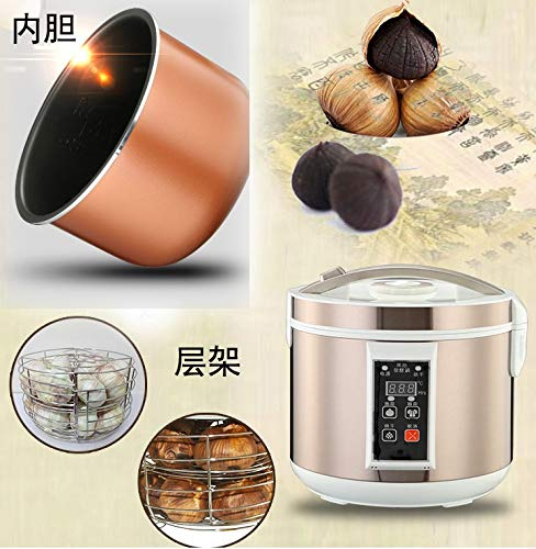 Black Garlic Fermenter, HomeYoo Black Garlic Ferment Box, Smart Fermentation Machine, Full Automatic Intelligent Control Garlics Maker Multiple Clove Garlic DIY Cooker, Home/Kitchen Utensil (Golden) by HomeYoo (Image #2)