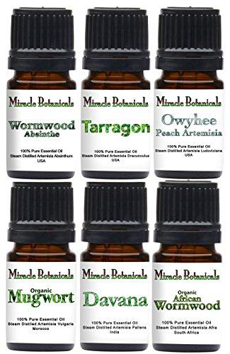 (Miracle Botanicals Artemisia Essential Oil Sampler - 100% Pure Therapeutic Grade - 6(5ml))