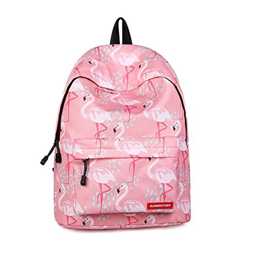 4ab38c8b Backpack for Girls, Flamingo Anti - Wrinkle College Student School Backpack  with Fun Fashionable Design