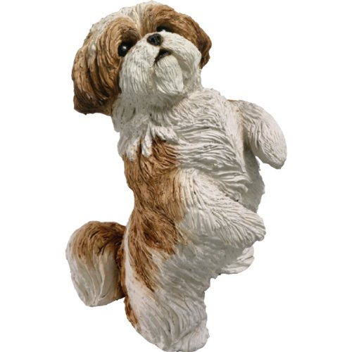 Sandicast Figurine - Sandicast Original Size Gold and White Shih Tzu Sculpture, Sitting Pretty