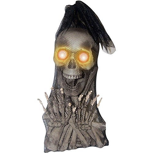 Bag of Bones Light Up Eyes Halloween Prop by Sunstar Gifts ()