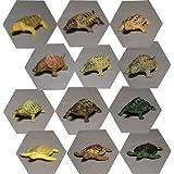 手のひらサイズ 亀の仲間たちミニフィギュア 陸と海 全12種セット
