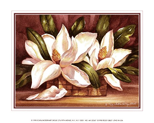 Blossoming Magnolias Art Print by Peggy Thatch Sibley 10 x - Magnolias Sibley