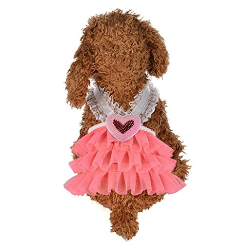 Wakeu Small Dog Girl Dress Pet Puppy Cat Lace Tutu Stripe Vest Skirt Clothes (XS, Series 2 ~ Pink) - Dog Vest Sweater